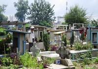 Ra hạn chót bốc mộ ở nghĩa trang Bình Hưng Hòa