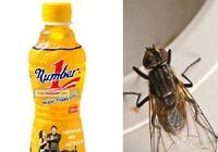 Vụ chai nước có ruồi của Tân Hiệp Phát: Bộ Công Thương lên tiếng