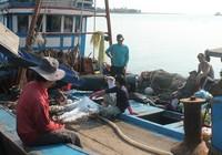 Liên quan đến cá chết: Đề xuất ngừng tính lãi suất cho vay với ngư dân