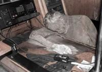 Tìm thấy 'xác ướp' nhà thám hiểm trong 'du thuyền ma'
