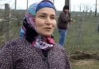 Cụ bà nông dân 60 tuổi giết cả ổ rắn 80 con