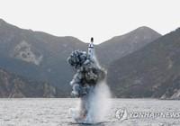 Triều Tiên có thể đóng tàu ngầm 3.000 tấn để bắn tên lửa đạn đạo