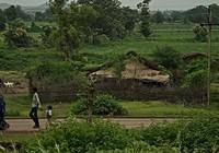 Phát hiện bất ngờ về làng 'tự tử' ở Ấn Độ