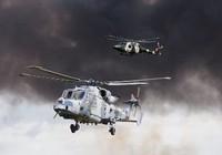 Hàn Quốc tiếp nhận 4 trực thăng săn ngầm 'Mèo rừng'