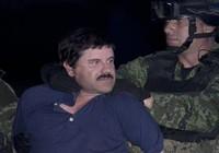 Con trai trùm ma túy khét tiếng Guzman bị bắt cóc