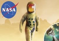NASA sợ Trái đất bị sự sống ngoài hành tinh thâm nhập