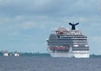 Công ty Mỹ thưởng 800 nhân viên 1 tuần du lịch Caribe