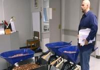 Doanh nhân Mỹ mang hơn 700 kg tiền xu đi nộp thuế
