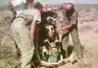Không quân Mỹ dùng gấu thử nghiệm ghế thoát hiểm
