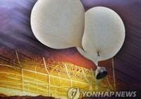 Triều Tiên nói Hàn Quốc bắn nhầm ... chim trời
