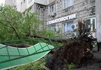 12 người thiệt mạng, Moscow tan hoang sau siêu bão