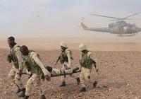 Bị phục kích ở Nigeria, 3 đặc nhiệm Mỹ thiệt mạng