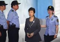 Luật sư đồng loạt xin rút, Hàn Quốc hoãn xử bà Park