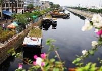 Độc đáo chợ hoa trên bến dưới thuyền giữa Sài Gòn