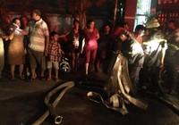 Cháy chung cư ở Bình Thạnh, dân hoảng loạn tháo chạy