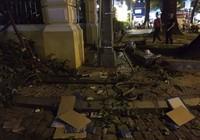 Nhánh cây trước Bưu điện TP.HCM rơi trúng 1 phụ nữ