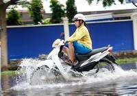 Nước ngập nhiều ngày ở KCN, nhiều công ty đóng cửa