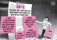 Cần hủy án lệ Việt kiều nhờ đứng tên mua đất
