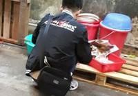 Hong Kong bắt chủ cửa hàng Việt Nam vì nghi giết mổ chó