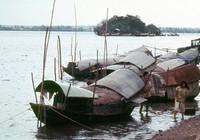 Bí ẩn Cù lao 'biến mất' trên sông Đồng Nai