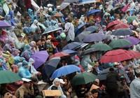 Người dân đội mưa xem hội chọi trâu truyền thống