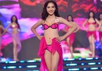 7 thí sinh từng thi sắc đẹp góp mặt vào 'Hoa hậu Việt Nam 2016'