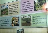'Nhại thơ' - lối sáng tạo độc đáo của người Việt Nam