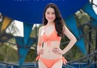 15 người đẹp có học vấn cao tại Hoa hậu Việt Nam 2016