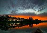 Ấn tượng với những bức ảnh hiếm về rừng rậm Amazon