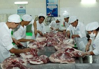 Thanh tra an toàn thực phẩm tại 12 tỉnh, thành phía Nam