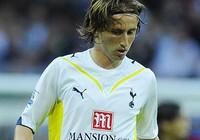 Chờ thầy lên tuyển, Modric tính bỏ Tottenham