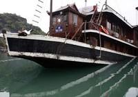 Thuyền trưởng vụ chìm tàu ở Hạ Long bị bắt