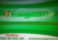 VTV xin lỗi khán giả về quảng cáo máy lọc nước Kangaroo