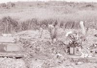 Kỷ niệm tác nghiệp: Vào pháp trường, điều tra nạn trộm xác