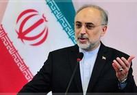"""Iran """"sẽ đóng cửa eo biển Hormuz"""", Mỹ """"sẵn sàng đối phó"""""""