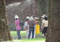 Nắng nóng kinh người ở Sài Gòn
