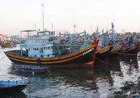 Phản đối Trung Quốc lệnh cấm đánh cá ở biển Đông
