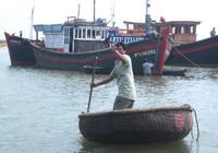Đi biển kiểu lưới rút Đàn 19