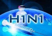 Dịch cúm H1N1 hoành hành tại 18 nước châu Âu