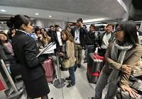 Cảnh vạ vật khắp các sân bay châu Âu