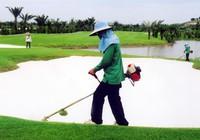 Báo cáo về sân golf ở TP.HCM: Chậm tiến độ sẽ bị thu hồi