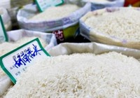 Gạo Trung Quốc chứa chất độc
