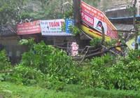 Những thiệt hại đầu tiên do bão đổ bộ vào đất liền