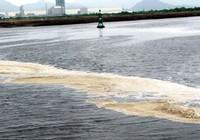 Giá cao của ô nhiễm (*)