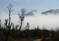 Kỳ 2: Ở nơi hít mây vào mũi, thở mây ra mồm