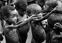 Ngày Nước thế giới 22-3: Nước & An ninh lương thực: Sự sống còn của nhân loại