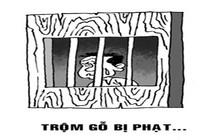 Trộm gỗ, bị phạt tù