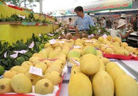 Nghịch lý trái cây miền Tây - Bài 2: Xuất khẩu: Kiểu nào cũng thua