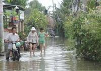 TP.HCM: Bể bờ bao, 200 hộ dân điêu đứng