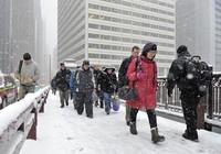 1.000 chuyến bay bị hủy vì bão tuyết ở Mỹ